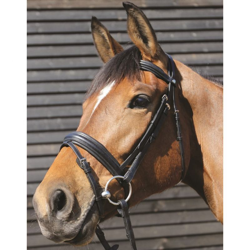 MARK TODD BRIDLE PADDED FLASH BLACK