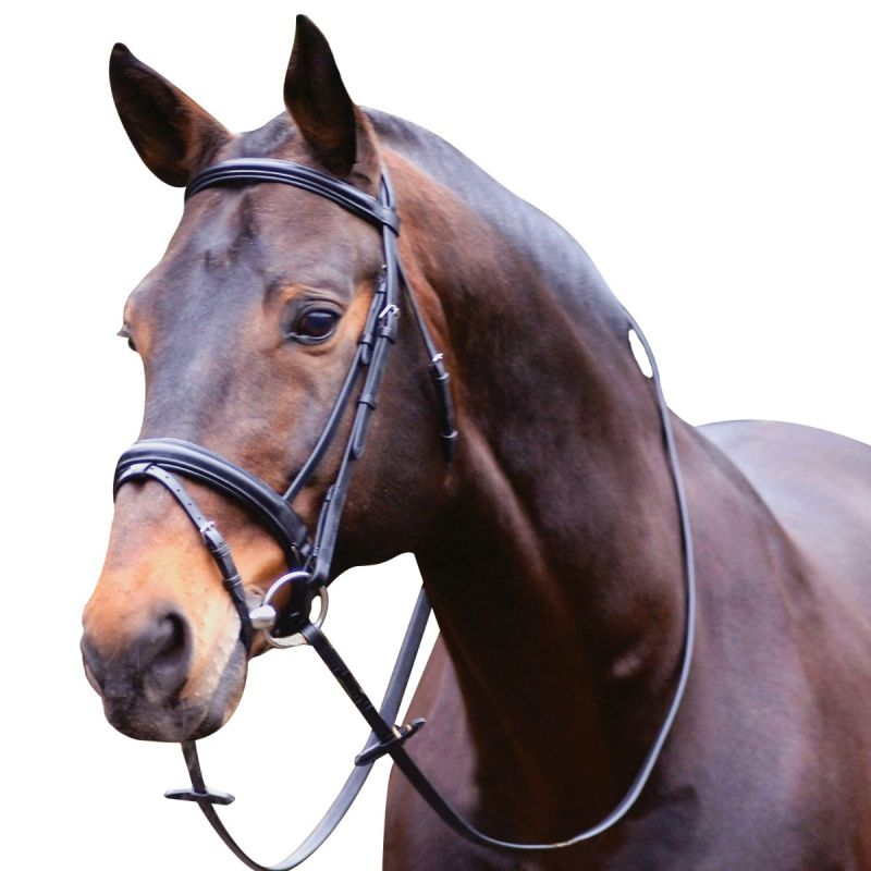 CALDENE CRANK NOSEBAND BRIDLE WITH REINS IN BLACK