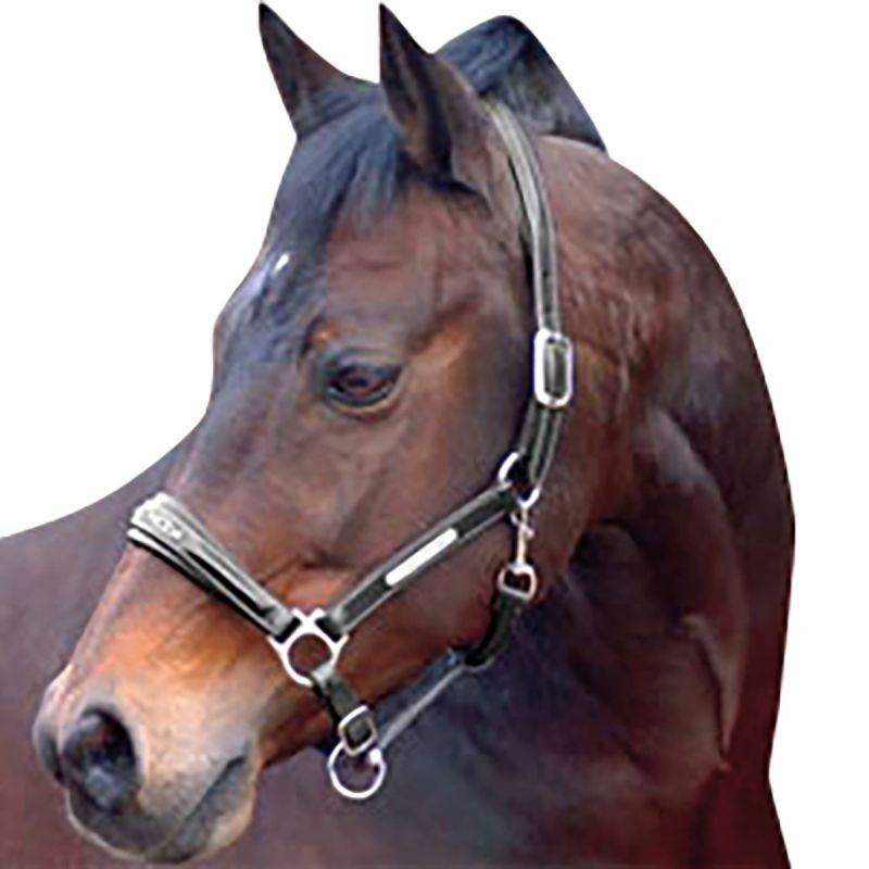 CALDENE HEADCOLLAR LEATHER DIAMANTE BLACK