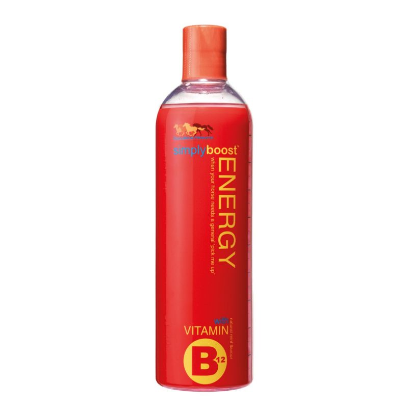 EQUILIBRIUM SIMPLYBOOST ENERGY