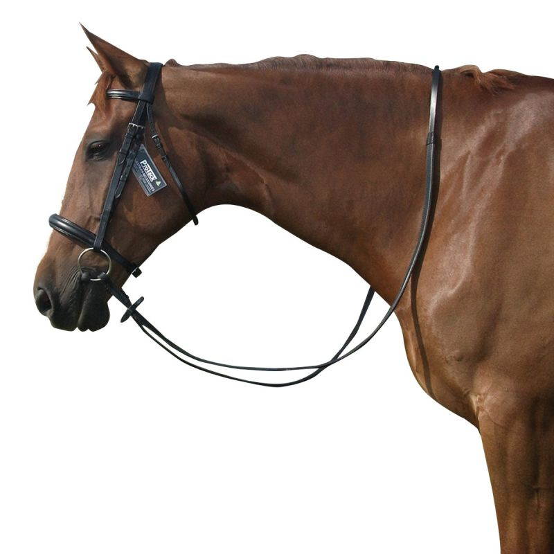PROTACK BRIDLE CAVESSON C/W RUBBER REINS