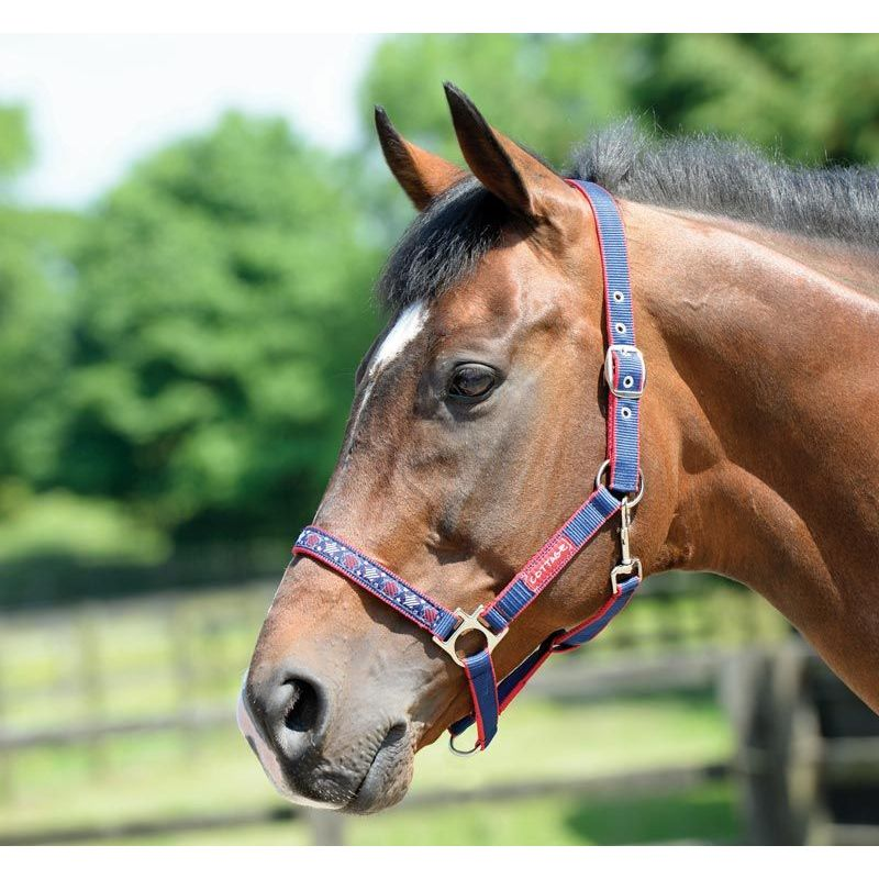 COTTAGE CRAFT HEADCOLLAR GALAXY NAVY