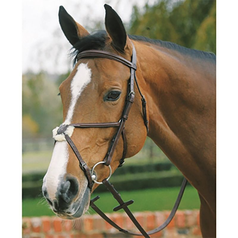 MARK TODD PLAIN RAISED BRIDLE WITH GRACKLE NOSEBAND IN HAVANA
