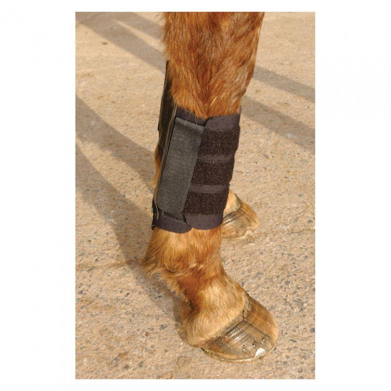 KITT Kool Brushing Boot