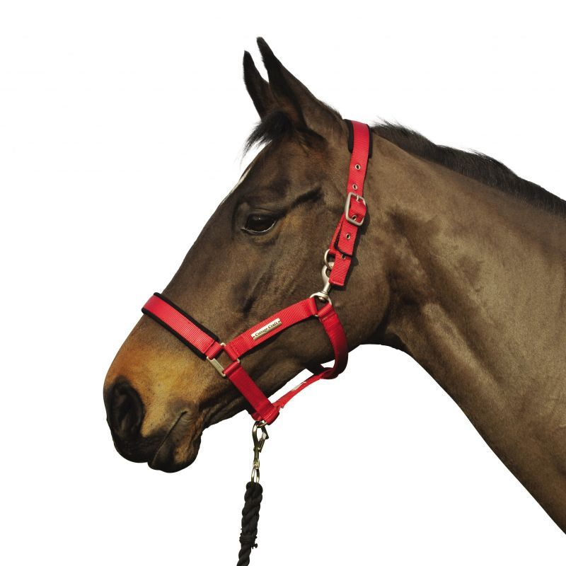 COTTAGE CRAFT HEADCOLLAR TURNOUT SAFE RED