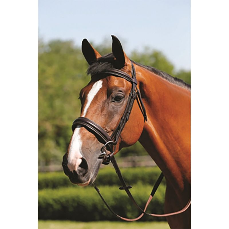 MARK TODD BRIDLE PADDED CAVESSON BLACK