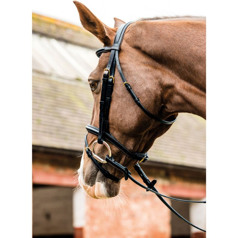 MARK TODD PERFORMANCE FLASH BRIDLE WITH BRASS FITTING IN BLACK