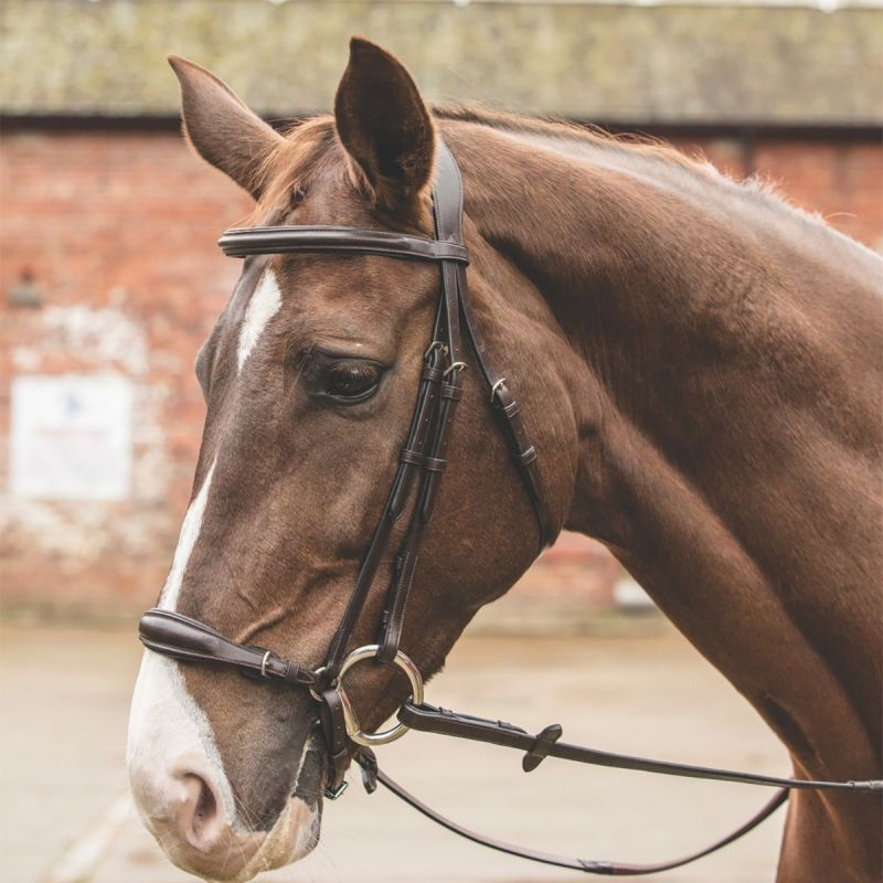 MARK TODD BRIDLE WITH GERMAN DROP NOSEBAND HAVANA