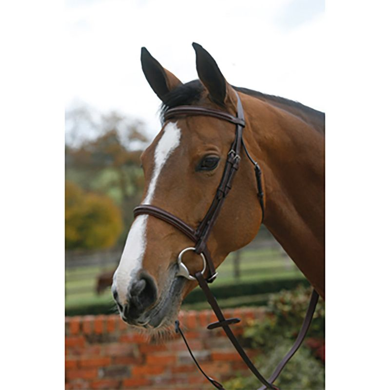 MARK TODD PLAIN RAISED BRIDLE WITH CAVESSON NOSEBAND IN BLACK