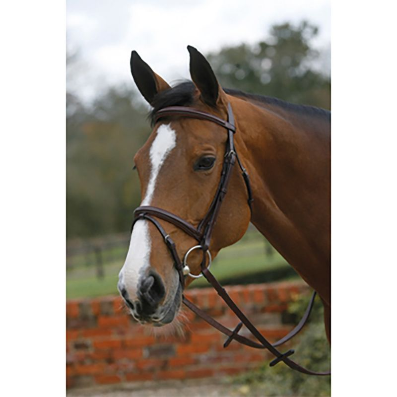 MARK TODD PADDED SQUARE RAISED BRIDLE WITH FLASH NOSEBAND BLACK
