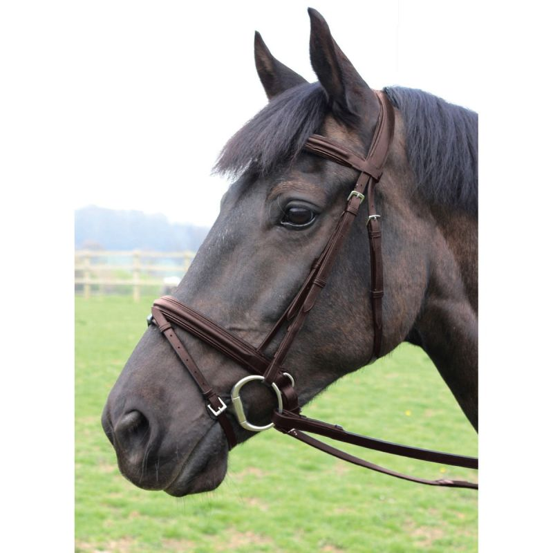 MARK TODD BRIDLE PERFORMANCE FLASH PATENT PIPED HAVANA