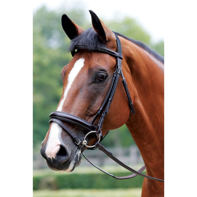 MARK TODD BRIDLE PERFORMANCE FLASH PATENT PIPED BLACK