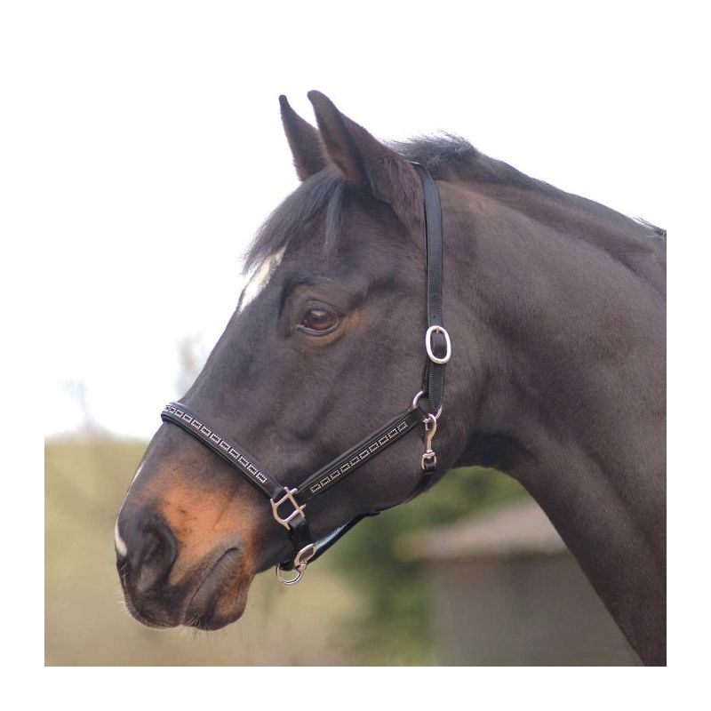 COTTAGE CRAFT HEADCOLLAR LEATHER BLACK